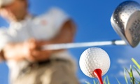$59 for One 60-Minute Golf Lesson from Bob Greenstein PGA Professional ($120 Value)